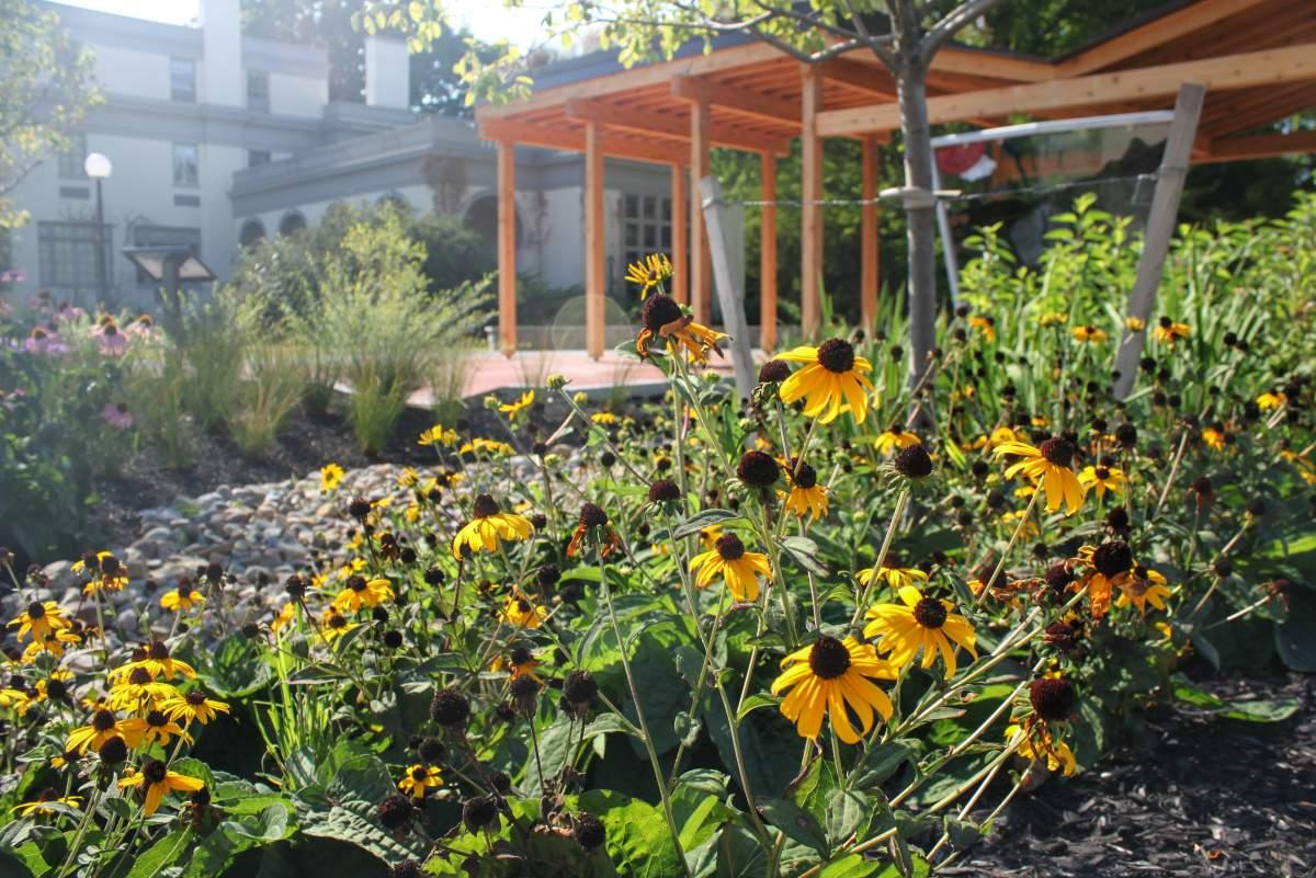 Barton Amp Loguidice Project Wins Landscape Architect Award